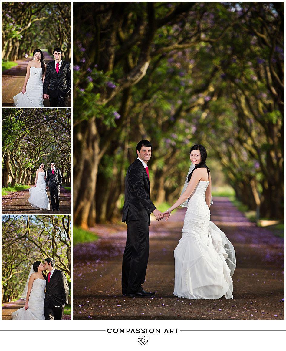 jacarandas-cullinan-wedding.jpg
